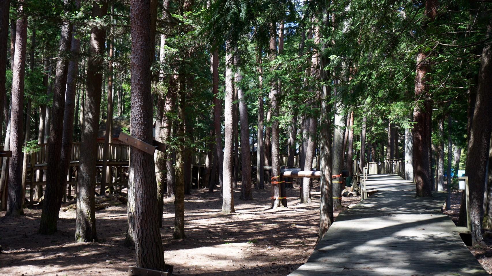 【自然豊か|富士河口湖町】『清水国明の森と湖の楽園』攻略ガイド(駐車場・トイレ)