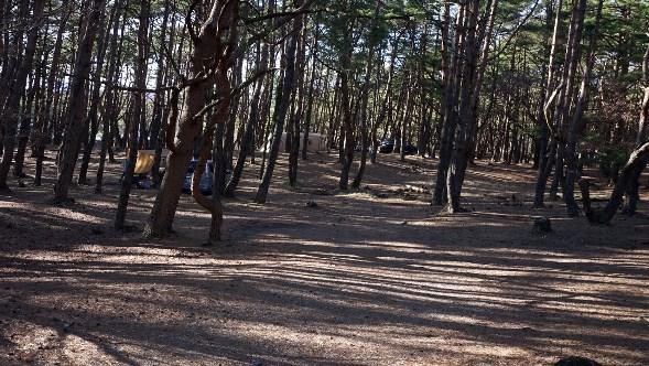 【山梨のゆるキャン△聖地】『本栖湖キャンプ場:もとすこ』攻略ガイド