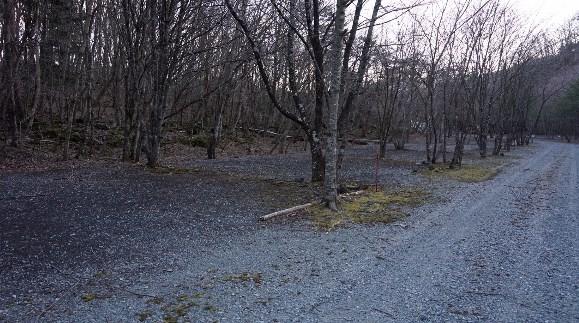 【富士山の樹海でお洒落キャンプ♪】『キャンプアカイケ』キャンプ場情報まとめ