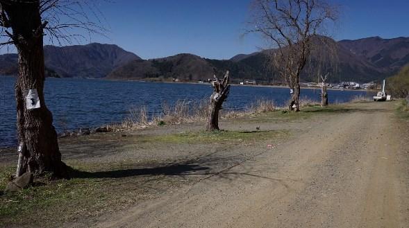 【山梨】『夢見る河口湖 コテージ戸沢センター』キャンプ場情報まとめ