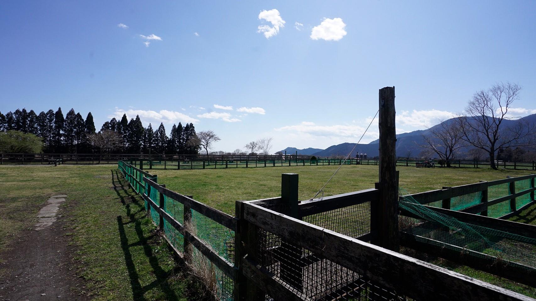 【広いドッグラン|富士宮市】『Field Dogs Garden』攻略ガイド(駐車場・トイレ)